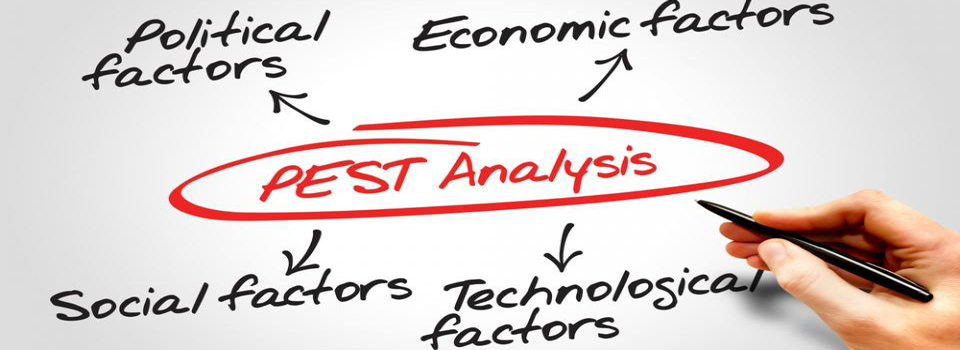 pest analysis MBA MCI DHBK
